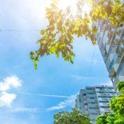 Ordenanza municipal en Madrid para la calidad del aire y la sostenibilidad